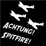 Aviation and Flight Simming