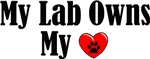 Lab Owns My Heart