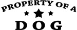 Property of Dog