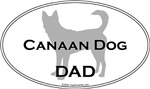 Canaan Dog DAD