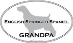 English Springer Spaniel GRANDPA