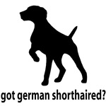 Got German Shorthaired?
