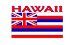 Hawaii Flag (Light)