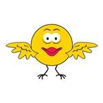 Birdie/Canary Smiley Face