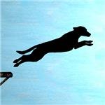 Dock Jumping Labrador Dog