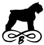Bouvier Dog Infinity