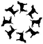 Labrador Dogs Circle