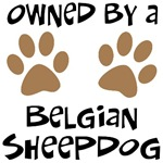Owned By A Belgian Sheepdog
