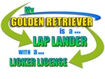 LAP LANDER ~ GOLDEN RETRIEVER (C)