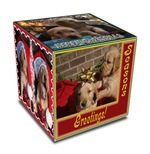 CHRISTMAS PUPPPIES IN A BOX