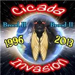 Cicada Invasion