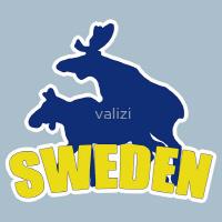 Swedish shirts