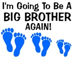 Big Brother Again! (3 boys)