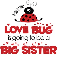 Love Bug Big Sister