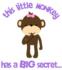 Little Monkey Big Secret