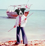 collie Boat