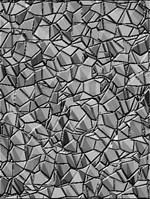 Silver Mosaics