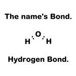 Hydrogen Bond.