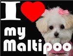 NEW I LOVE My Maltipoo