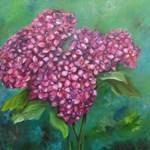 Blooming Hydranga