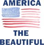 American Flag Pride