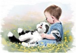 Bearded Collie and child