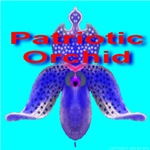 Patriotic Orchid