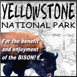YNP Bison Map