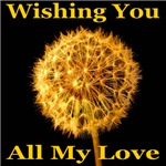 Wishing You All My Love