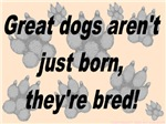 Great dogs aren't just born, they're bred!