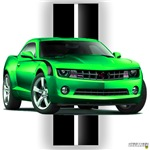 New Camaro Green