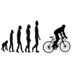 Evolution steps to bicycle