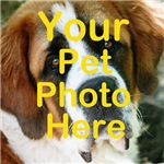 Pet photo template