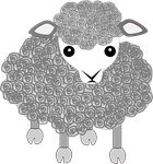 Curly sheep looking left