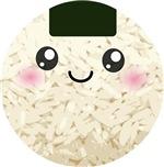 Cute Kawaii Rice Ball