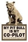 Pit Bull Pilot Design 2