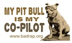 Pit Bull Pilot Design 1