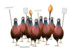 Pheasant Rebellion 2