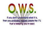 Understanding OWS