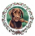 Chocolate Labs Christmas