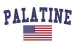 Palatine US Flag