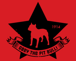 Pit Bull Star Icon