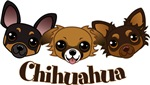 Chihuahua
