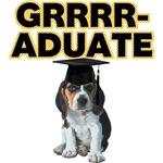 Graduation Beagle Puppy