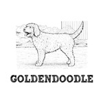 Goldendoodle T-Shirts