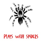 Plays With Spiders