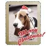 Santa Basset Hound