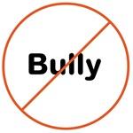 Anti Bully