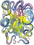 Wild Octopus