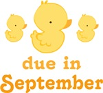 Cute Duck September Due Date T-shirts